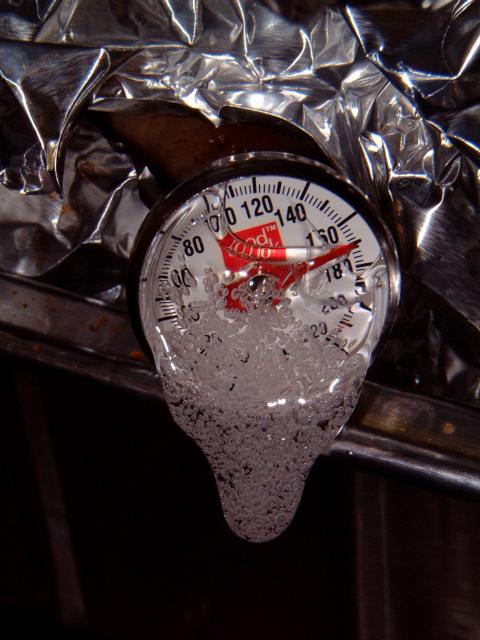 melted turkey thermometer